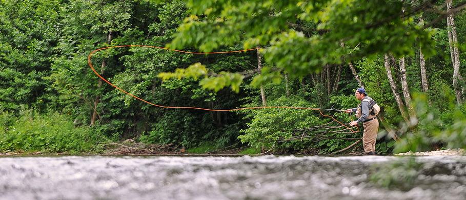 Reduzierte Fliegenschnüre von namenhaften Herstellern bei Flyfishing Europe