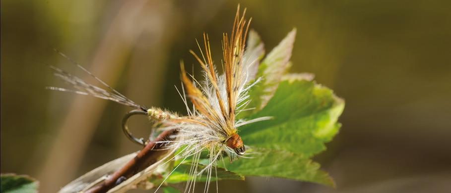 Fliege erhältlich bei Flyfishing Europe