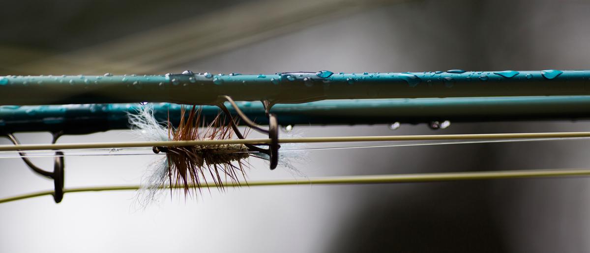 Ein Salmologic Nylon Leader fertig montiert und bereits mit einer Lachs-Trockenfliege gefischt.