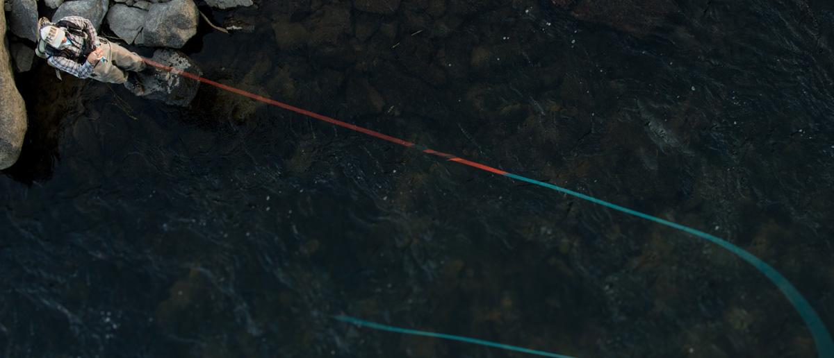 Schusskoepfe Zweihandfliegenschnuere Switch Schnuere Scientific Anglers