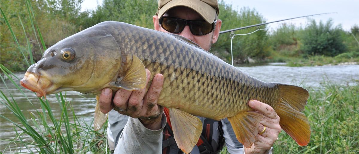 Scott Fliegenruten zum Fliegenfischen, auch auf Nicht-Salmoniden, bei Flyfishing Europe