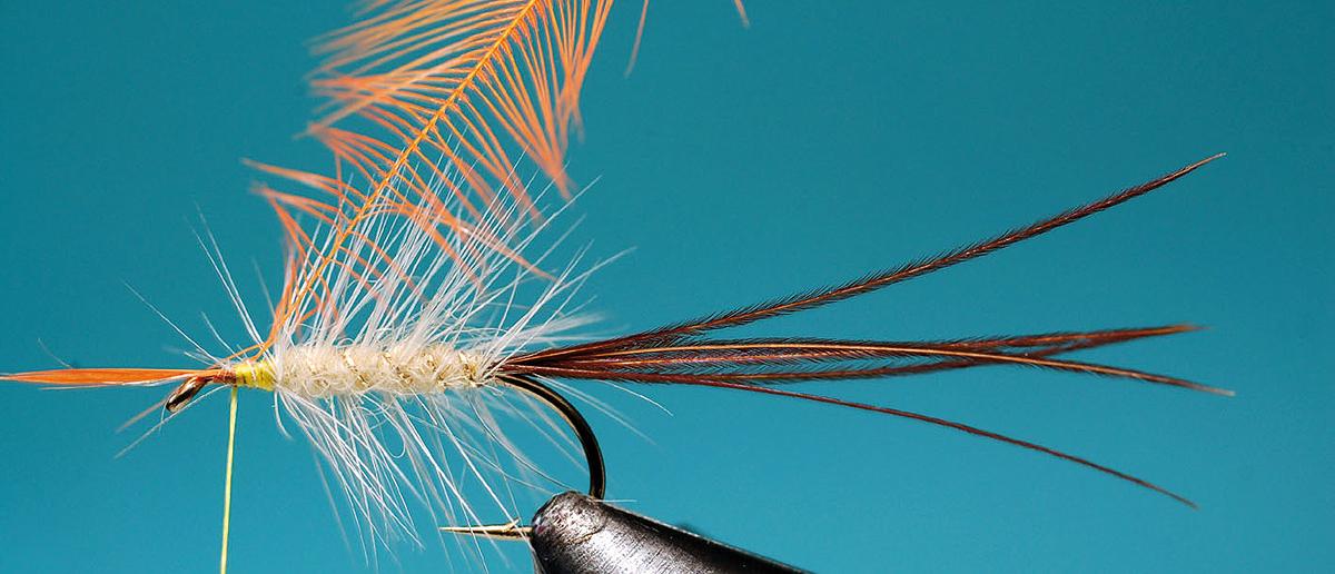Skalpe Sattelfedern Hahnenhecheln zum Fliegenbinden
