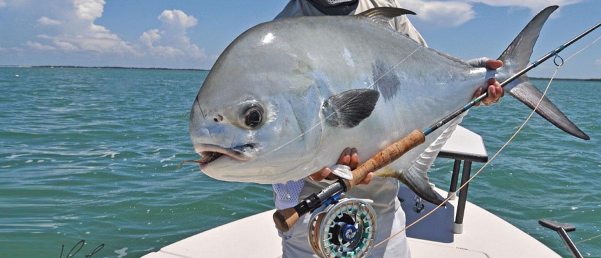 Spezialmuster, Bullets & Divers erhältlich bei Flyfishing Europe