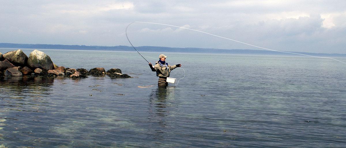 Auch ein spezieller Einsatzbereich für eine Fliegenschnur: kaltes Salwasser, z.B. auf Meerforelle. Auch hierfür finden Sie bei Flyfishing Europe die passende Fliegenschnur.