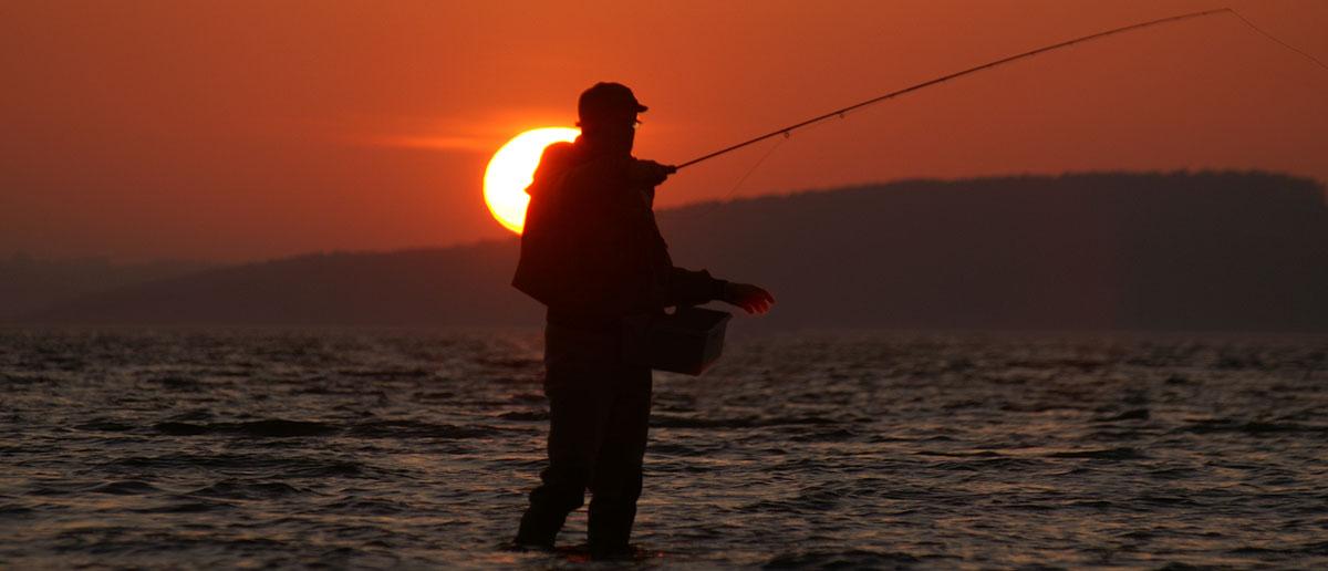 Shu-Fly Fliegenruten zum Fliegenfischen im Sonderangebot bei Flyfishing Europe