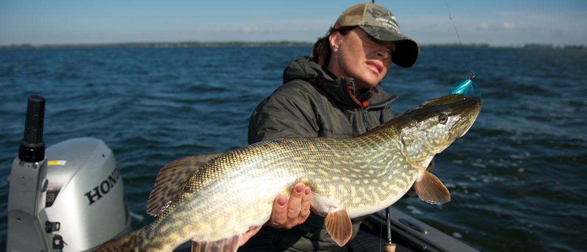 Natürlich auch beim Hechtfischen für Mirjana Pavlic erste Wahl: das TYGer Stahlvorfach.