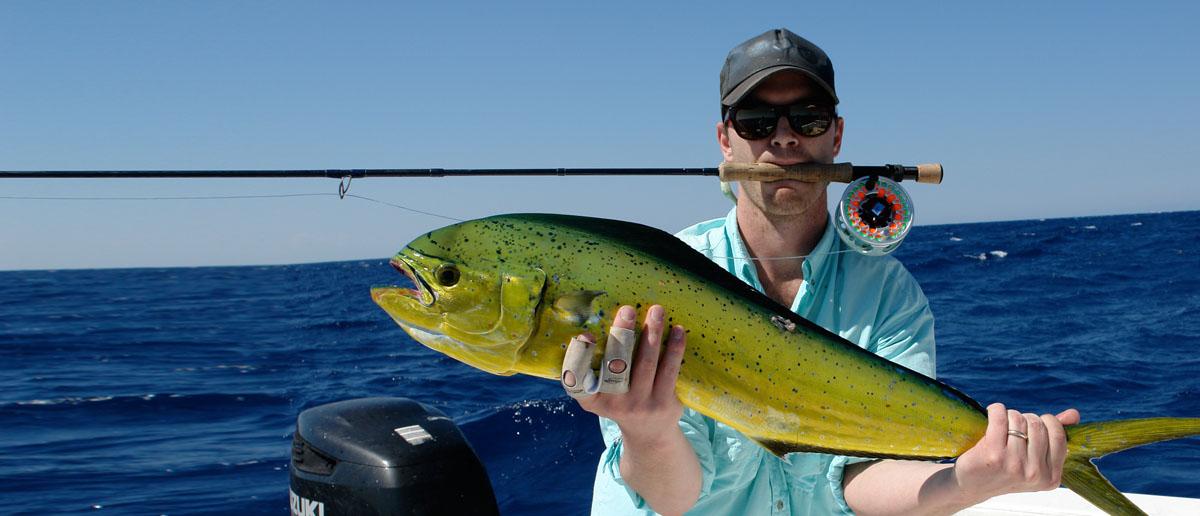 Auch hierfür sind Nautilus Fliegenrollen gemacht: harter Einsatz im Salwasser, belohnt mit einem Dorado.