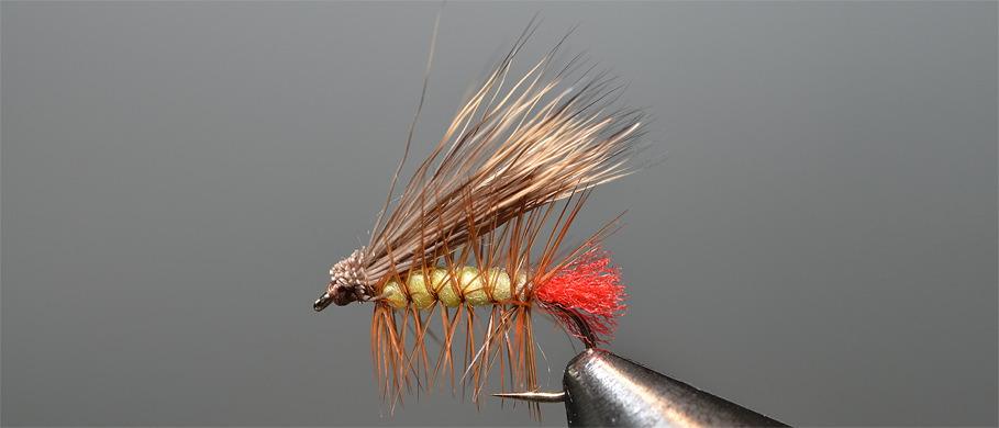 Hameçons Daichi chez Flyfishing Europe