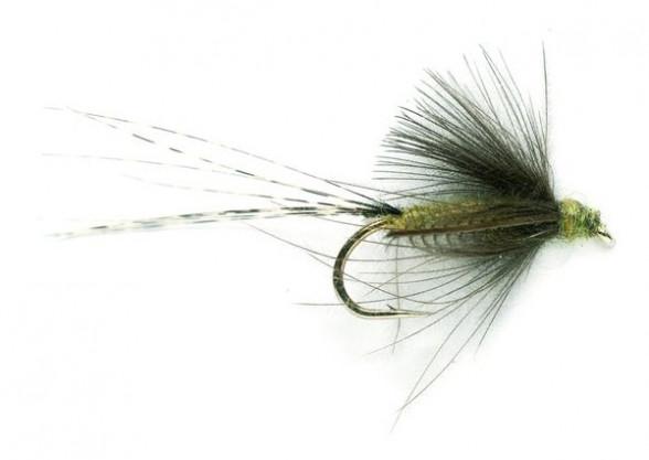 Transitional Dun Blue Winged olive Trockenfliege