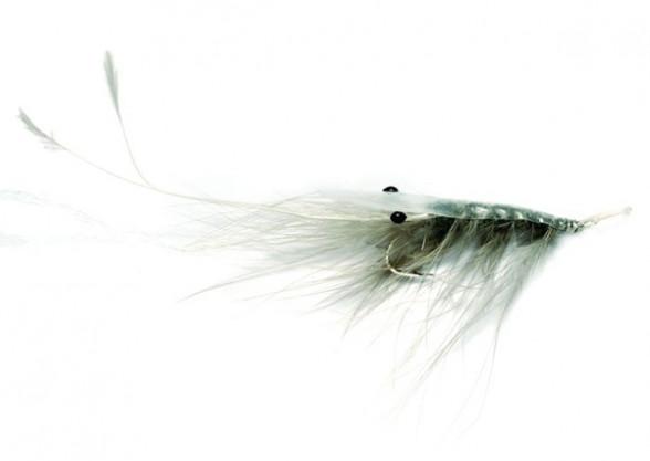 Oeland Shrimp grey Meerforellenfliege
