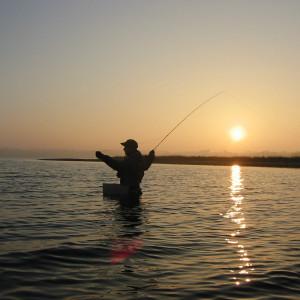 Weit werfen lernen mit Einhand Schusskopf Fliegenfischen