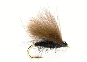 Black CdC Koecherfliege Sedge Trockenfliege