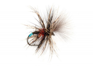 McPhail Grunter Bibio Stillborn Aufsteiger Emerger