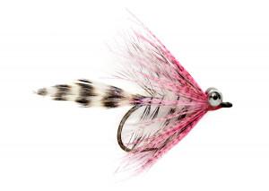 Polar Magnus pink Meerforellenfliege Claus Eriksen