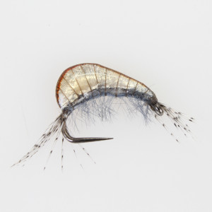 Gammarus 3D tan Bachflohkrebs Nymphe