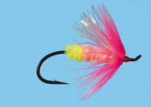 Cabollera Size 6, Fliege zum Fliegenfischen auf Pazifiklachs & Steelhead bei Flyfishing Europe
