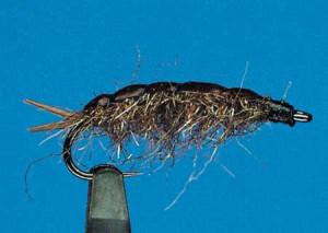 Tangläufer 10, Küstenfliegen zum Fliegenfischen auf Meerforelle bei FFE