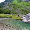 CF Burkheimer Spring Creek Fliegenruten fuer kleine Gewaesser