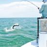 Nautilus NV Monster Fliegenrolle mit Tarpon im Sprung