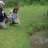Eintages-Kurs für Einsteiger ins Fliegenfischen Landung Fisch